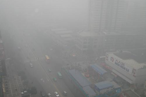 [陕西]遭遇大雾天气影响航班公路运输
